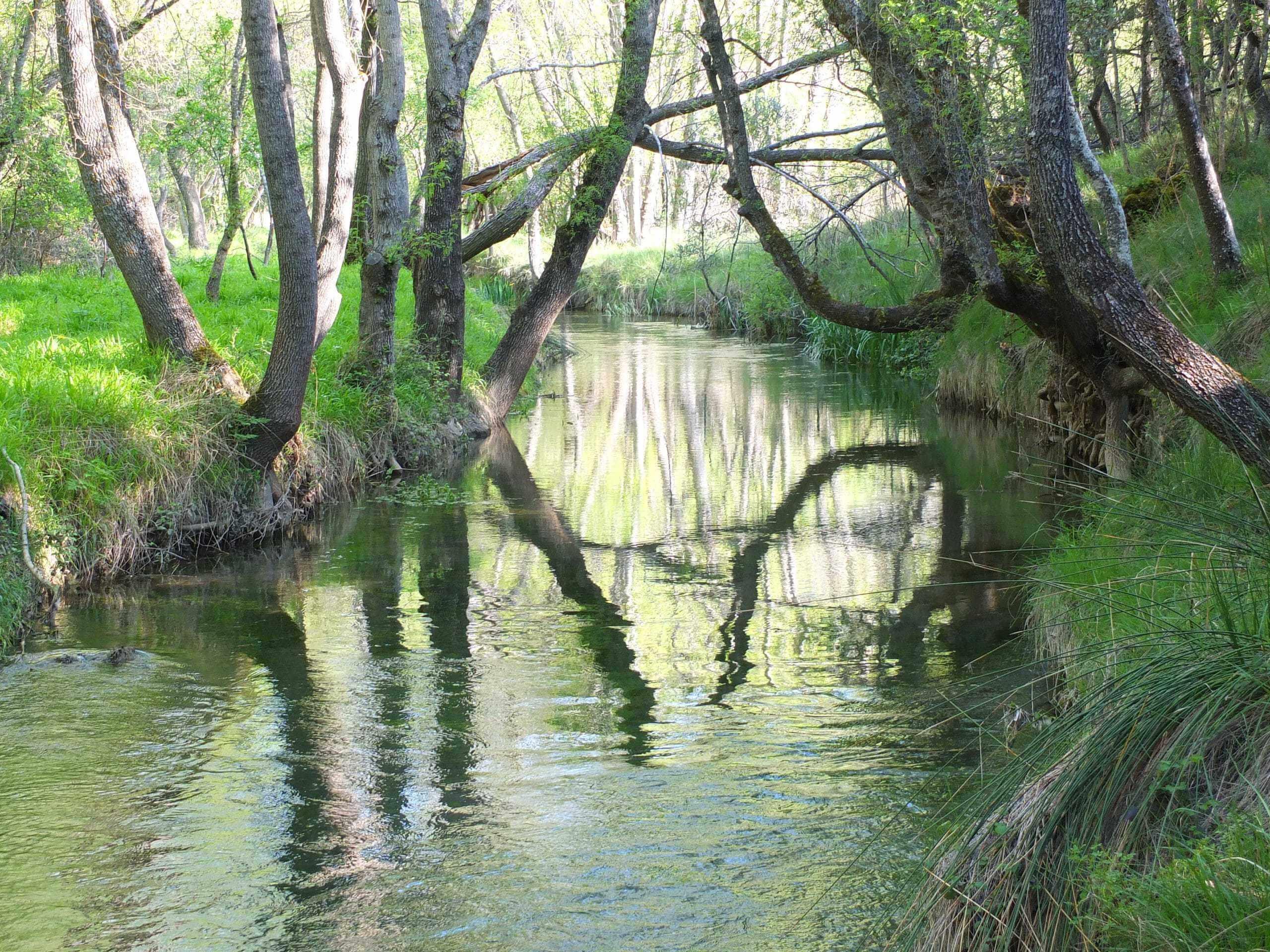 Rio Dulce al paso por La Cabrera
